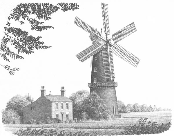 Sibsey Windmill, Lincolnshire Image
